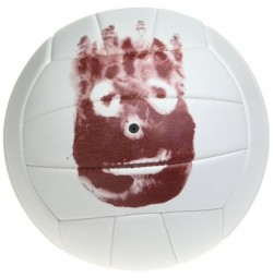 Wilson Volley Ball