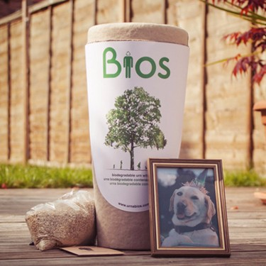 Biodegradable Pet Urn Tree
